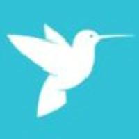 蜂鸟网络技术公司