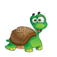 乌龟给力服务