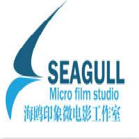 海鸥印象微电影工作室
