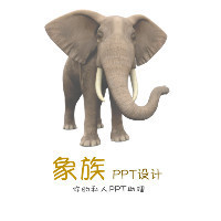 象族PPT设计