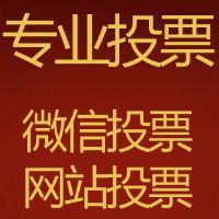 川翔网络投票