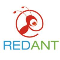 红蚂蚁网络科技