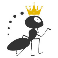 重庆蚂蚁推广