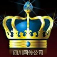 四川网传信息技术有限公司