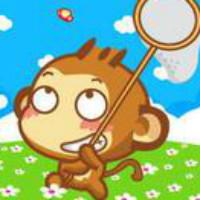 敏捷的小猴子