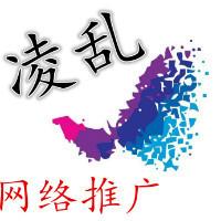 凌乱网络推广团队