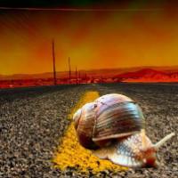 高速前行的蜗牛