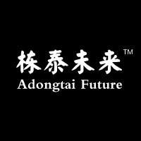 栋泰未来创意文化公司