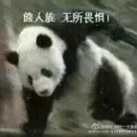一叶知秋shui