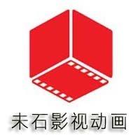 上海未石影视文化有限公司