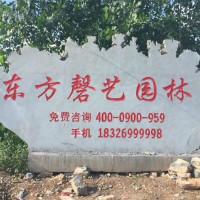 东方磬艺园林