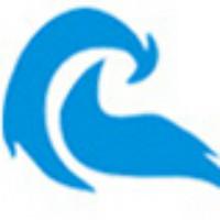 西安灵鸟网络技术