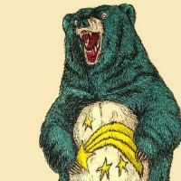 北极熊信息科技