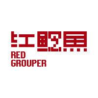 红鲶鱼品牌设计顾问