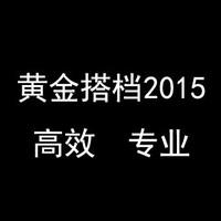 黄金搭档2015