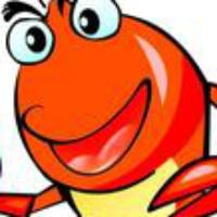 虾虾XyX