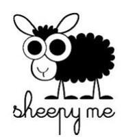 绵羊网络安全