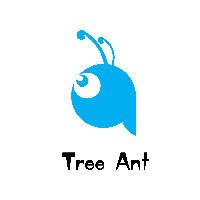 树蚁视觉工作室