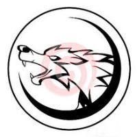 奎木狼团队