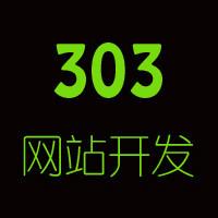 303网站建设