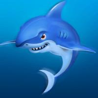 小小小鲨鱼