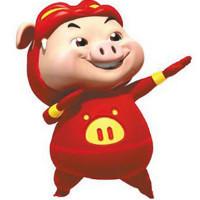 奋斗的猪猪侠