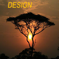 Designer's