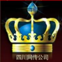 四川网传信息技术公司