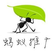 蚂蚁推广旗航店