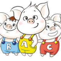 三只小猪设计旗舰店