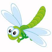绿蜻蜓888