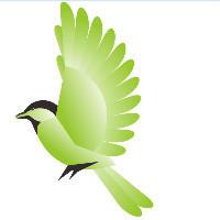 琉璃鸟文化传媒