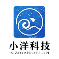 山东小洋网络科技有限公司