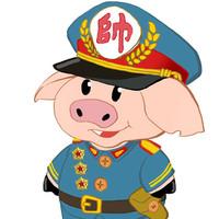 万户网络-猪元帅