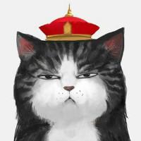 猫先生的店