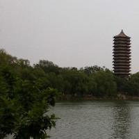 北京博雅科技工作室