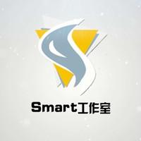 smart网络工作室