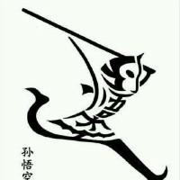 大师兄网络技术