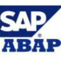 SAP 作坊