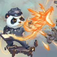 i爱吃肉的熊猫