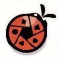 桔色瓢虫艺术工坊