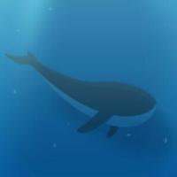 蓝鲸灵网站开发