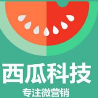 郑州西瓜科技