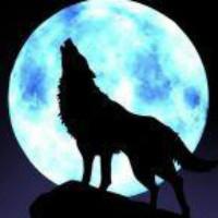 SWAT孤狼