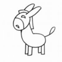 小毛驴景观规划设计