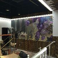 苏州大学艺术学院墙绘组织