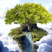 一棵树图片设计