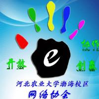 河北农大渤海校区网络协会