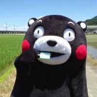 一只设计熊