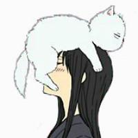 猫猫与少年